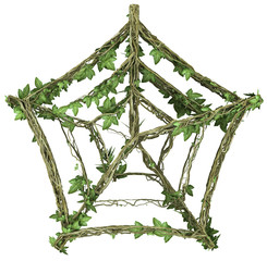 Ivy nature web symbol