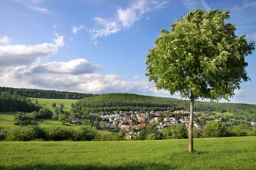 Landschaft im Taunus