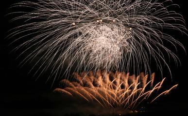 Goldregen Feuerwerk
