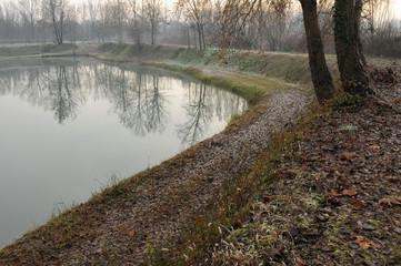 zona brenta paesaggio 1370