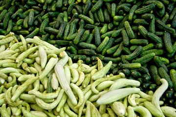 Fresh Organic Cucumber/ Gherkins At A Street Market In Istanbul,