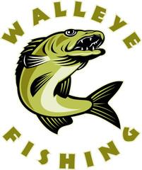 walleye fish fishing