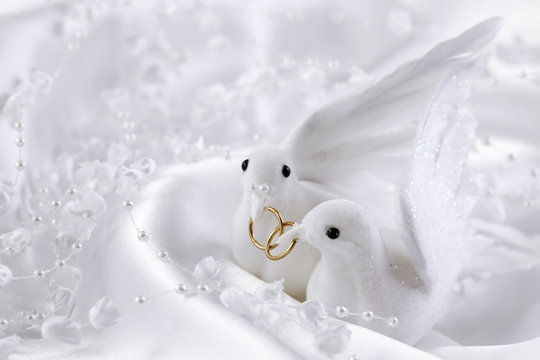 White doves with wedding rings