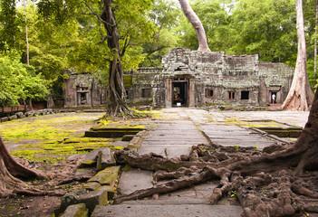Ta Phrom, Angkor Wat, Cambodia.