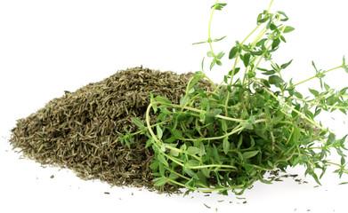 thym sec et thym vert