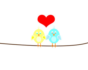 two in love birds on a wire