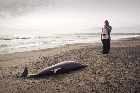 Dead Dolphin 05