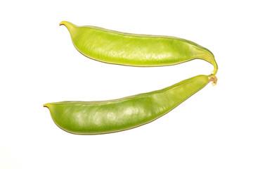 knife bean