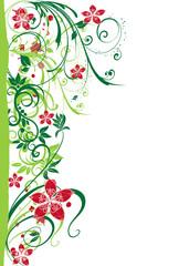 abstract flower Illustration vector spring summer green red