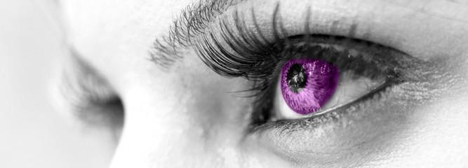 Purple Eye - Beautiful, Feminine