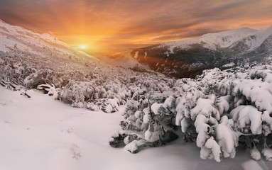 winter sunset in the Carpathian mountains