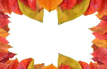 Cornice di foglie rosse
