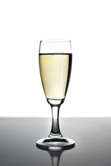 bicchiere di champagne francese su sfondo bianco