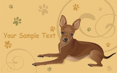 Vector illustration a dog and traces from paws