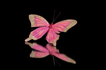 decorative butterfly on a black background