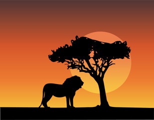 africa safari silhouettes of lion - vector