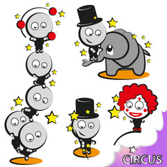 cicus - drollig