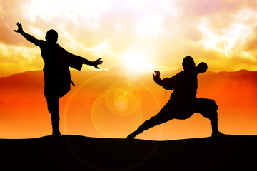 Silhouette illustration of two figures doing martial art stance Wall mural