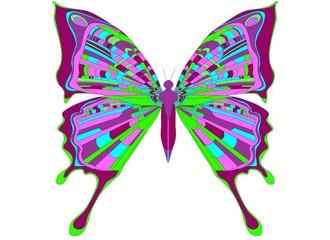 butterfly, meadow, nature, art, cartoon, cartoons, design