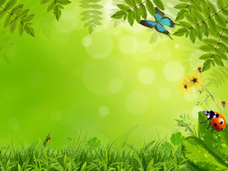 Dreamy spring meadow