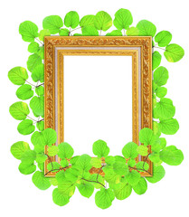 Leaves with gold frame