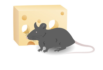 Rat and cheese vector illustration