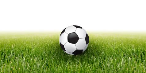 soccer ball and green grass