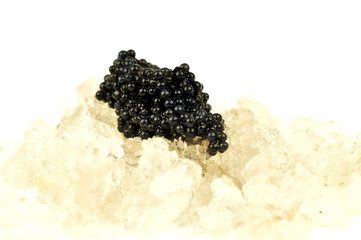 Caviar on ice