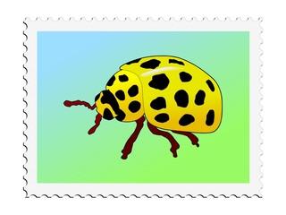 Yellow ladybird. Vector stamp