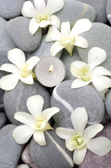 Spa setting with beautiful white flowers, pebbles and candle