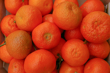 frutta clementine