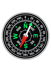 Vector magnetic compass
