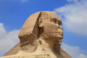 Wall Murals Egypt Sphinx of the Great Pyramid in Giza, Egypt