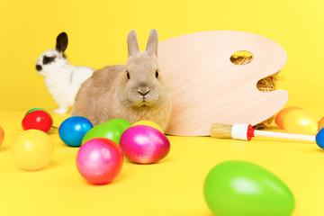 Eier anmalen osterhasen