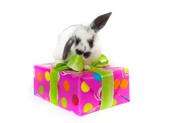 Geburtstagsgeschenk Überraschung Kinder