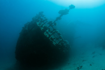 Acrylic Prints Shipwreck Wreck in the Red Sea