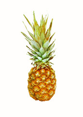 Ripe tasty pineapple