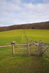 Fototapete - An English Rural Landscape in Winter