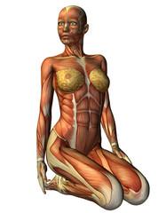 Wall Mural - Muskelln Frau auf Knien von vorne
