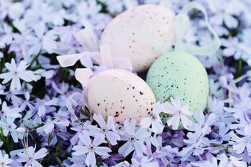 Easter Eggs Hidden in Spring Flowers