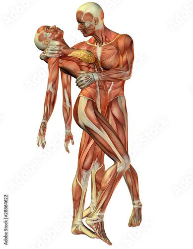 Muskel Frau und Mann stehend\