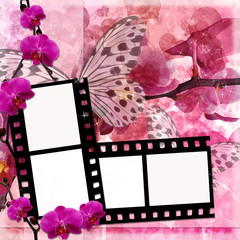 Butterflies and orchids flowers background  with film frame ( 1