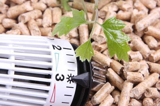 pellets thermostatventil grün