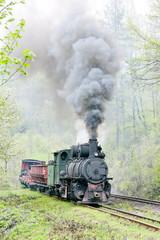 Obraz narrow gauge railway, Banovici, Bosnia and Herzegovina - fototapety do salonu