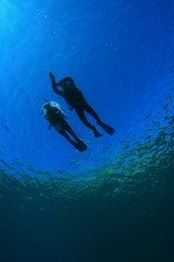 Scuba Divers Student and Instructor