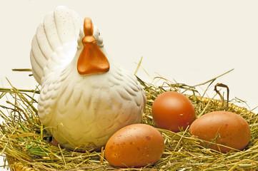 Bio-Eier aus Deutschland