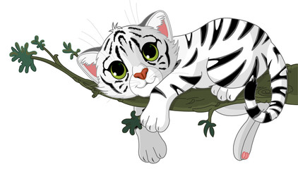 Canvas Prints Fairytale World Tiger is on a branch