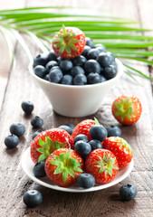 Erdbeeren und Heidelbeeren