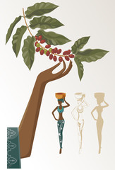 a woman takes the crop of coffee
