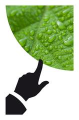 Wall Mural - Planète environnement écologique terre développement